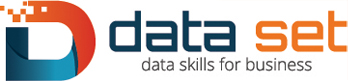 Data Set Logo